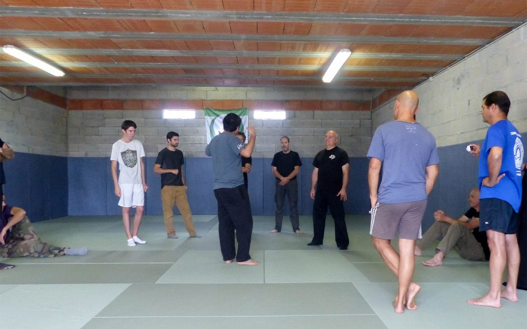 Cours de systema addam toulouse 2018