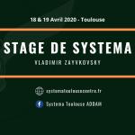 Affiche stage systema zaykovsk 2020y